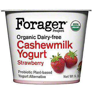 Forager Organic Strawberry Cashew Yogurt, 5.3 oz