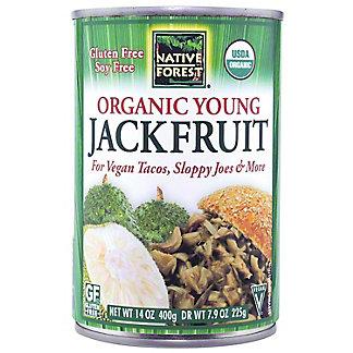 Native Forest Jack Fruit Organic, ea