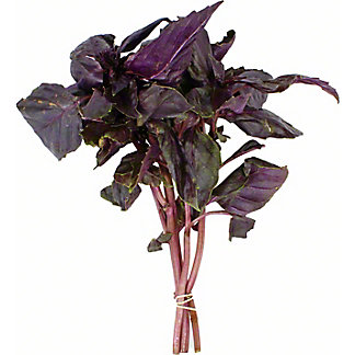 Fresh Purple Basil, ea