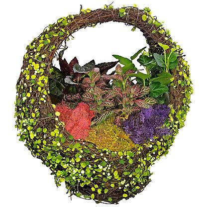 Basket Plantscape, 11 inch