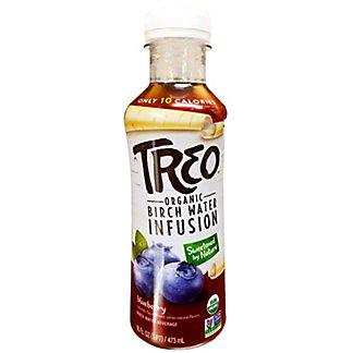 Treo Water Birch Blueberry Organic, 16 oz
