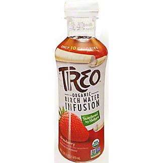Treo Water Birch Strawberry Organic, 16 oz