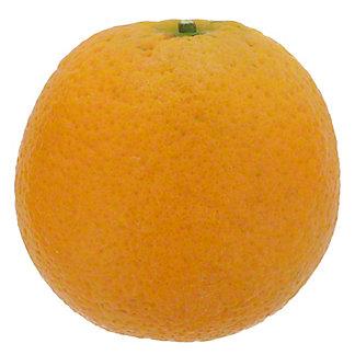 Fresh XL Valencia Oranges