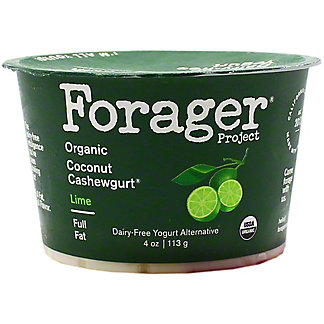 Forager Good Plant Fat Lime Cashewgurt, 4 OZ
