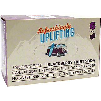 Wave Soda Blackberry Soda 12 oz, 6 pk