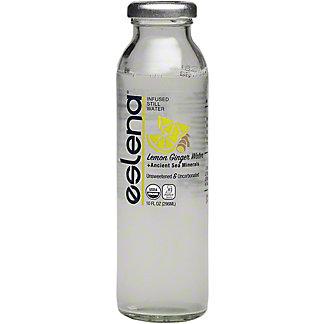 Eslena Water Lemon Ginger Infused, 10 oz