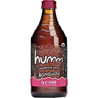 Humm Kombucha Raspberry Hopps, 14 oz