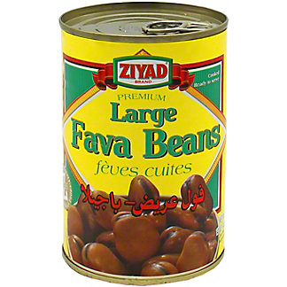 Ziyad Fava Beans Can, 15 oz