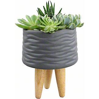 Metropolitan Planter, 6 inch