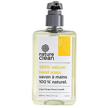 Nature Clean Citrus Natural Liquid Hand Soap, 16.8 oz