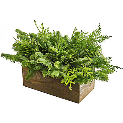 Evergreen Wooden Box, ea