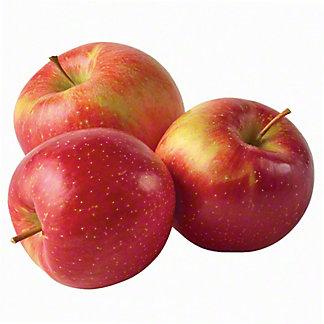 Organic Evercrisp Apples