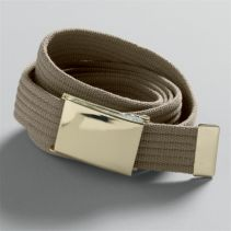 Gold Buckle Webb Belt 046100
