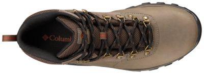 Men's Newton Ridge ™ Plus II Waterproof Hiking Boot