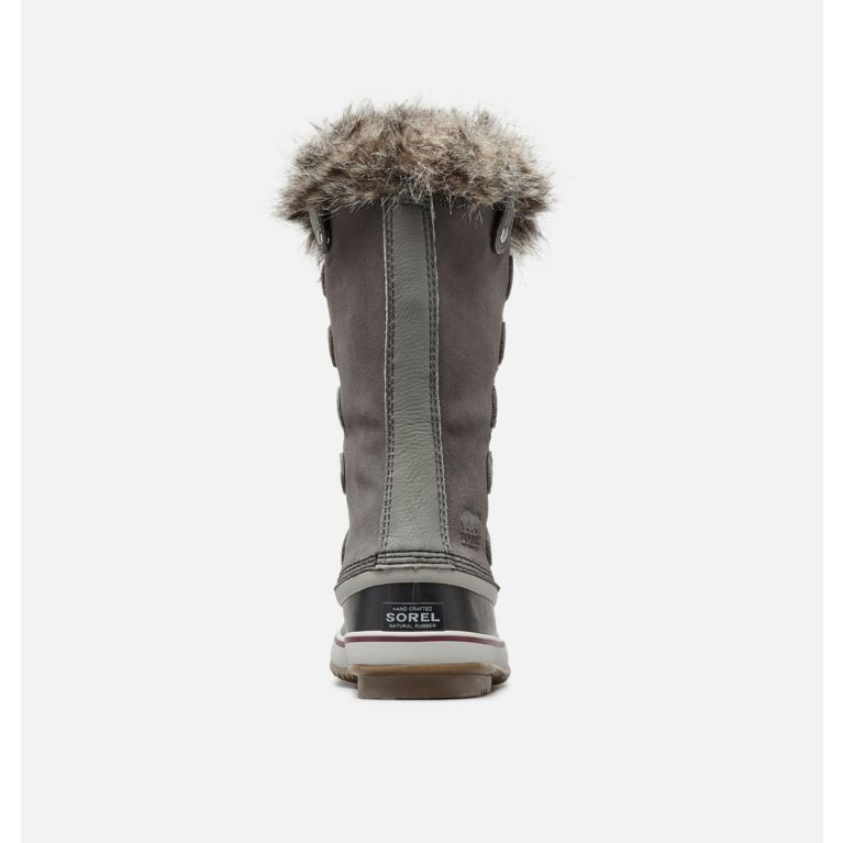 56eb31809146 Women s Joan of Arctic Winter Boot