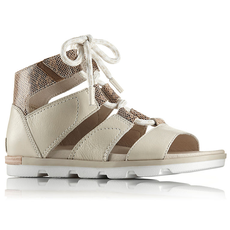 93aa6c824c4 Women s Torpeda Lace II Leather Gladiator Lace Up Sandal
