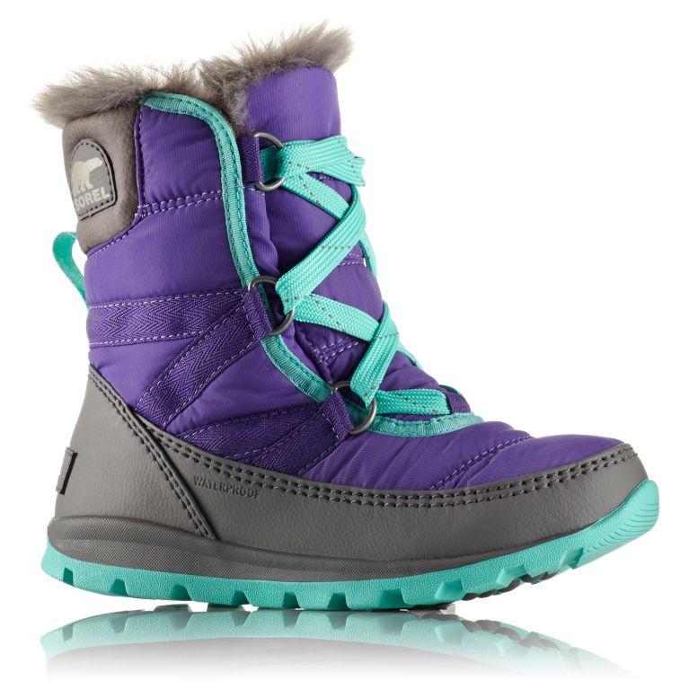 4005e42b99 Big Kids' Whitney™ Short Lace Boot | SOREL