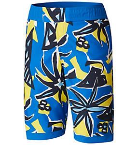 Boys' Toddler Sandy Shores™Board Short