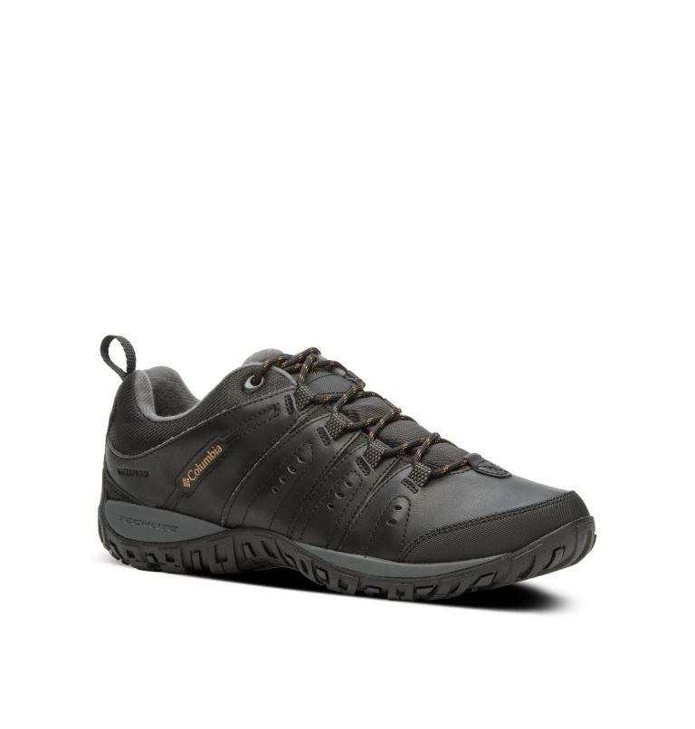 magasin en ligne 81b33 69046 Chaussure imperméable Woodburn II Homme