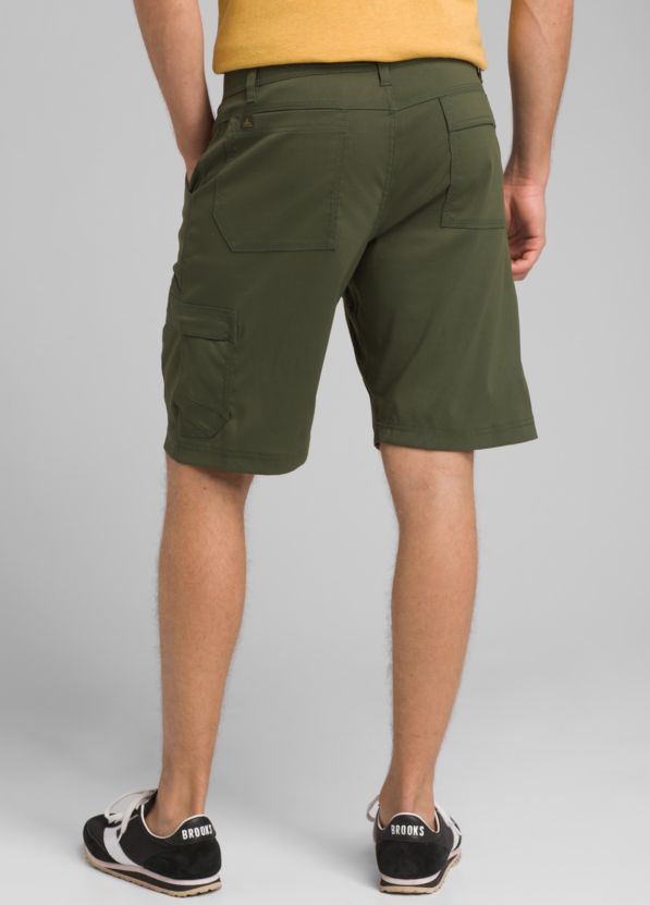 Stretch Zion Short