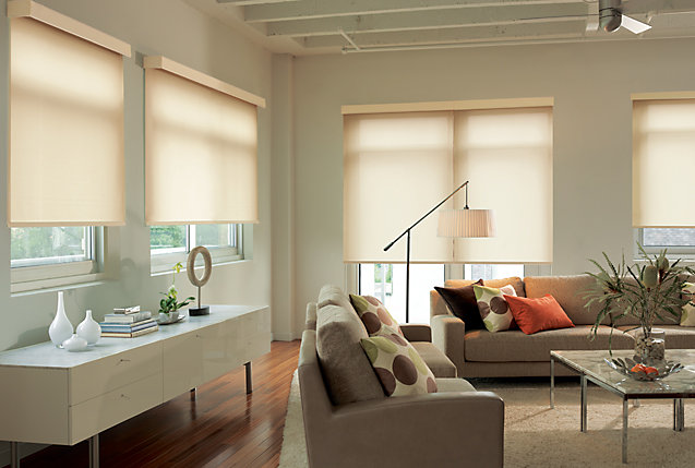 Order Levolor Blinds Shades In Toronto Amazing Window Fashions