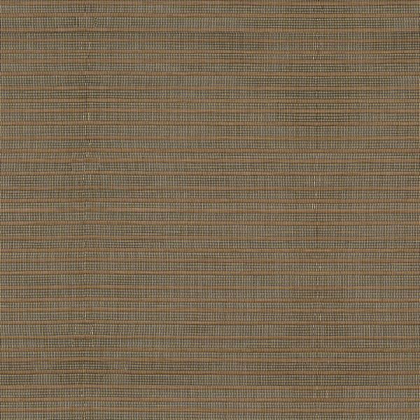 Roller Shades - Batten No Fabric Liner Champagne 310YW006