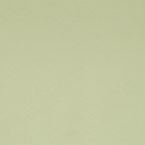 Roman Shades - Designer Textures Light Filtering Fresh Green 11170333