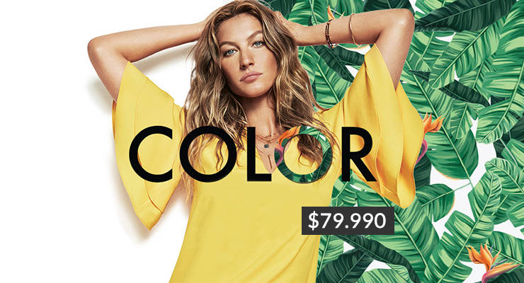 campaña color