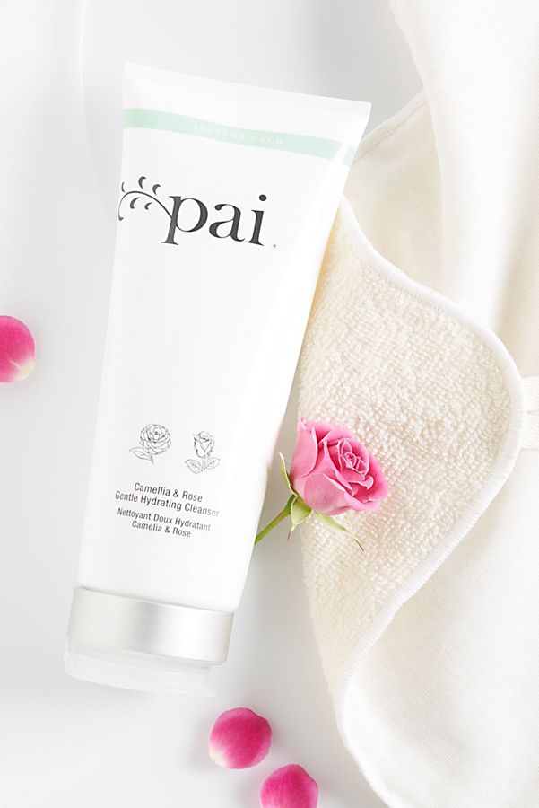Pai Skincare Camellia and Rose Gentle Hydrating Cleanser 200ml的圖片搜尋結果