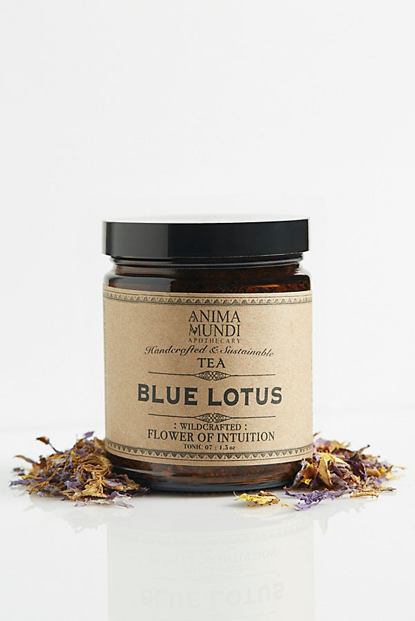 Anima Mundi Blue Lotus Tea Free People