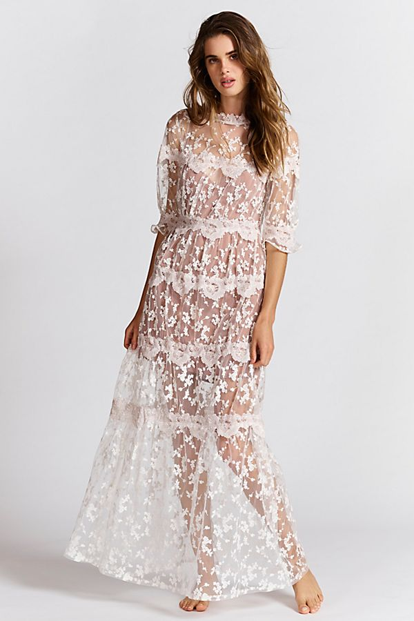 21184258c9b1d Rosebud Embroidered Mesh Maxi Dress