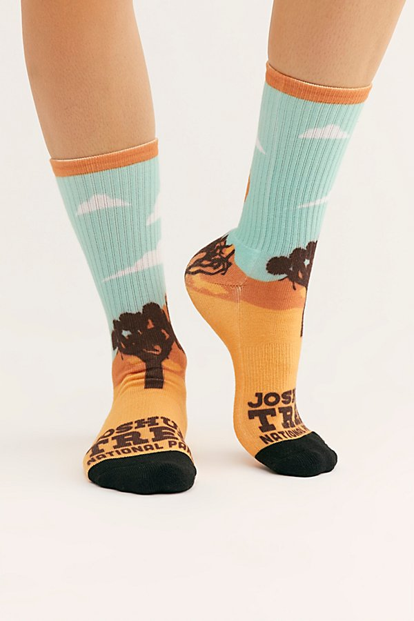 Slide View 2: Parks Project Poster Sock