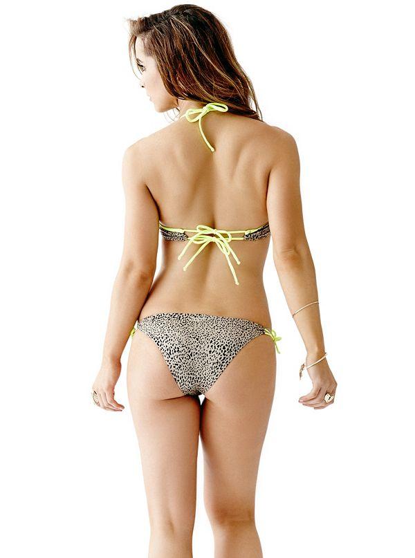 cheetah print super push up bikini bra top. Black Bedroom Furniture Sets. Home Design Ideas