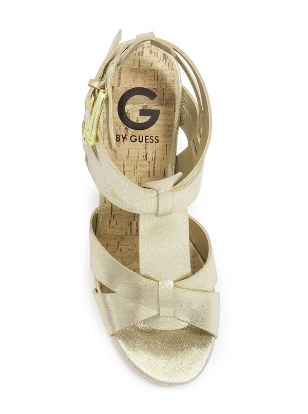 GGENTRY-GOLLL-ALT3