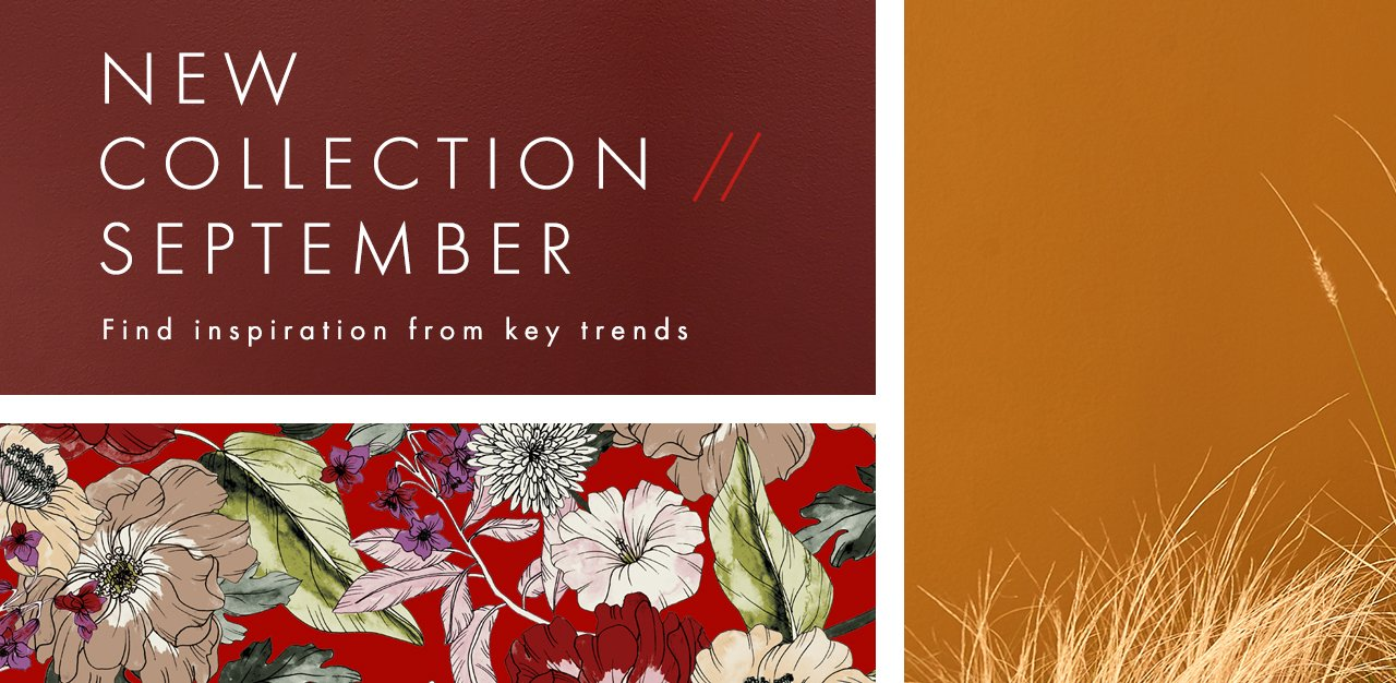 Find inspiration from key trends