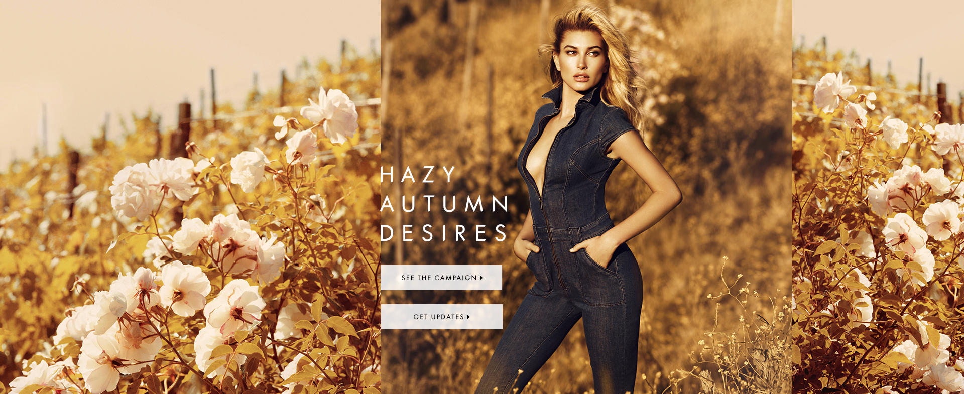 Hazy Autumn Desires
