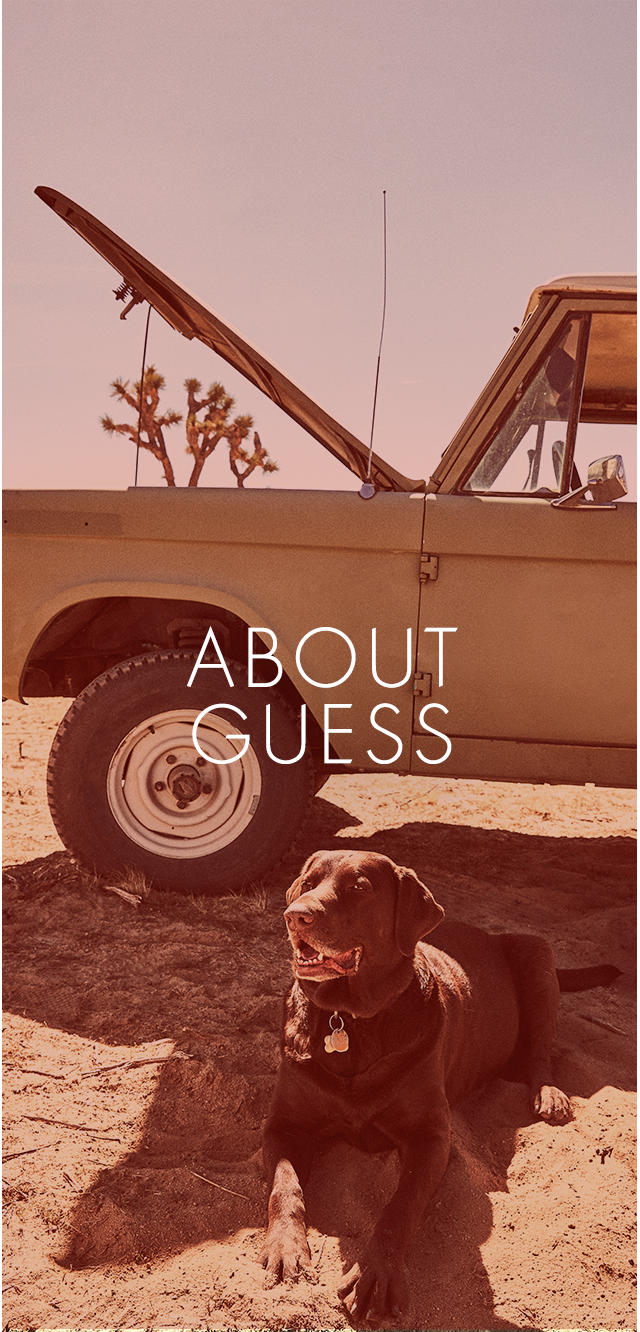 about GUESS