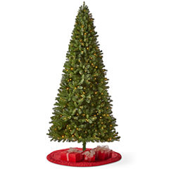 North Pole Trading Co. 9 Foot Green Grand Quick Set Pre-Lit Christmas Tree