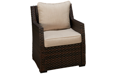 Ashley Salceda Lounge Chair with Cushion