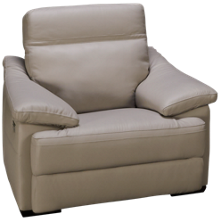 Natuzzi Editions Giotto Leather Power Recliner with Tilt Headrest and Lumbar