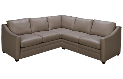Craftmaster C9-DS Motion Leather Power 2 Piece Reclining