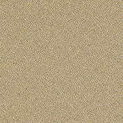 Standard-Dune