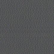 Standard: Dark Gray