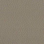 Standard: Medium Parchment