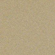 Solid: Dune