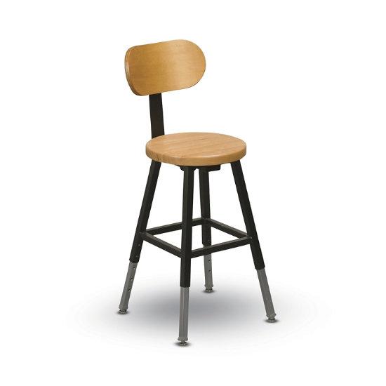 Prime Adjustable Height Lab Stool With Back Ibusinesslaw Wood Chair Design Ideas Ibusinesslaworg