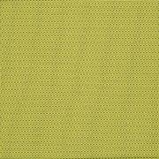 Olive Fabric