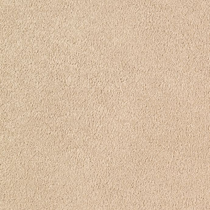 Quiet Sophistication Ivory Buff 3719