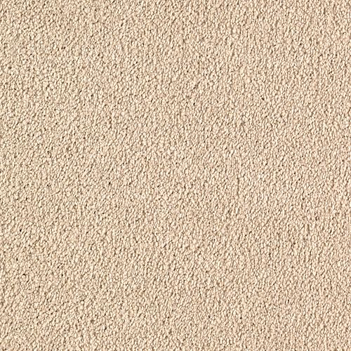 Quiet Sophistication Flaxen 3722