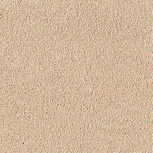 Quiet Sophistication Praline 3724
